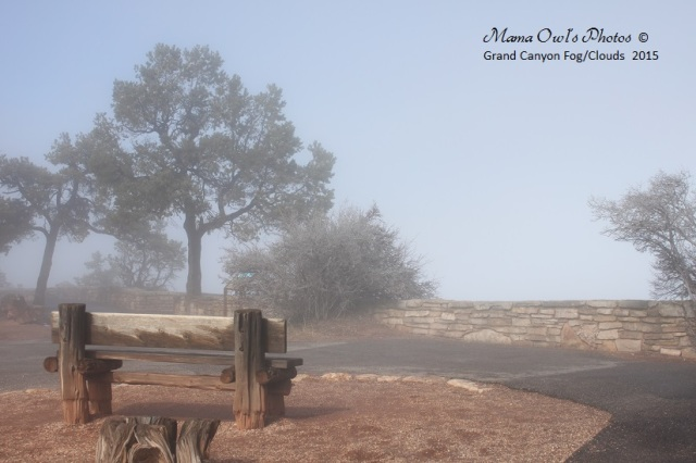 Bench at a foggy Grand Canyon in the spring of 2015